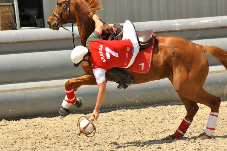 Horse Ball. Pretty impressive I must say. Not for me.