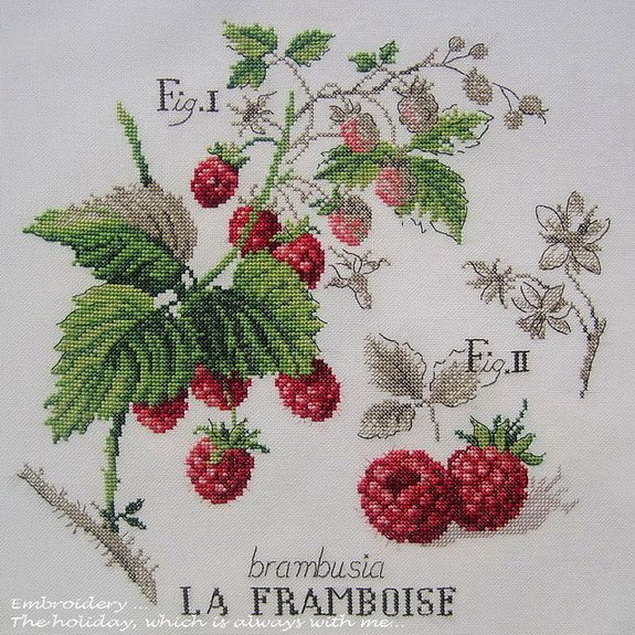 Embroidery ... The holiday, which is always with me...: L'etude aux Framboises (Veronique Enginger)