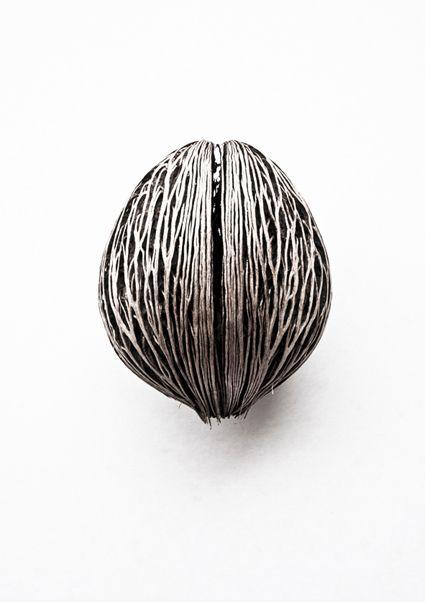 valscrapbook:    whatiseewhenirun:Pong Pong Seed(Cerbera Odollam )