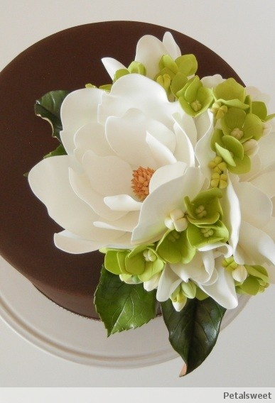 Sugar magnolias, hydrangea, buds and leaves on chocolate fondant...by Petalsweet.