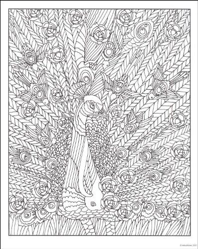 mindware hidden coloring pages google search