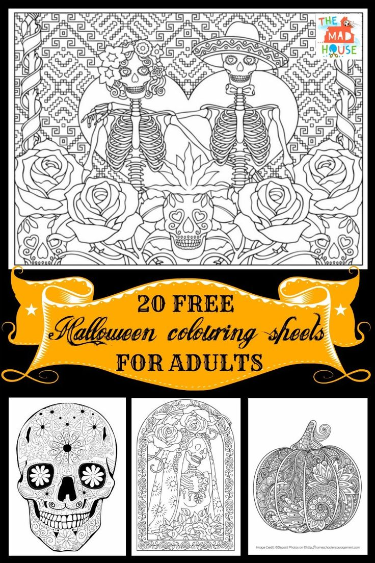 Halloween Colouring pages for Adults   20 Halloween coloring Pages for Adults. Celebrate Halloween and Day of the Dead with this fab selection of Halloween Colouring Pages