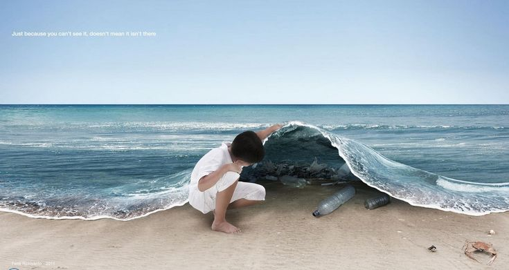 El consumo responsable del siglo XXI