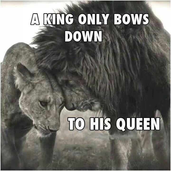 A king only bows down to his queen...  and Im yet to find mine.