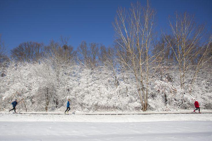 A túlzásba vitt futás olyan káros, mint a mozgásszegény életmód
