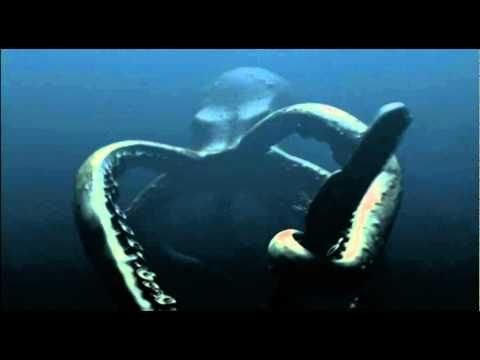 Mega Shark vs Giant Octopus' [best parts] - YouTube
