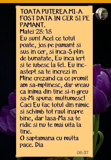 Mesajul de luni 2 noiembrie 2015  Diana Paraoan