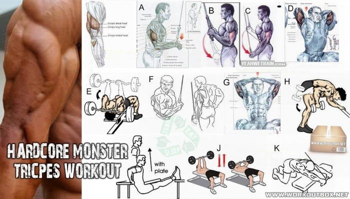Tasty, delicious Hardcore shoulder workouts