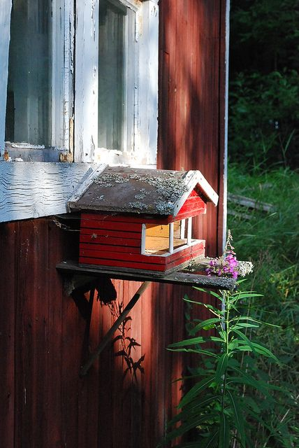 DSC_2674 | Flickr - Photo Sharing! Tiny bird house!