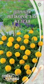 Цинния низкорослая 0.5 г Желтая (Семена Украины)