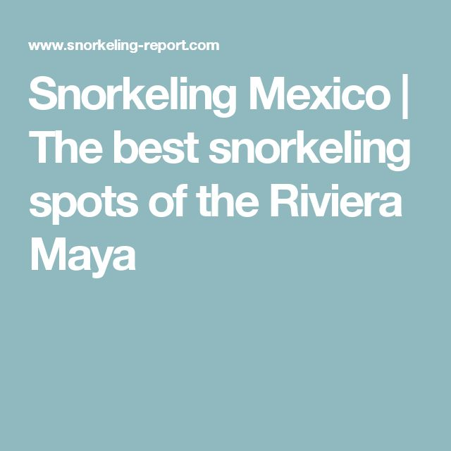 Snorkeling Mexico | The best snorkeling spots of the Riviera Maya