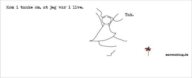 """""""i-live"""" - covers til facebook - www.marensblog.dk"""