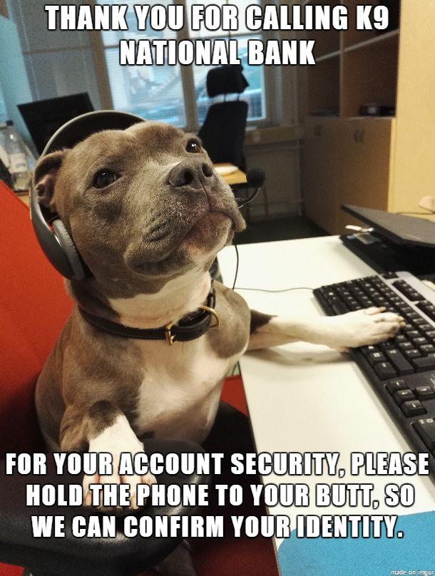 We offer great short-term interest SQUIRREL!