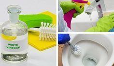 6 Tipps für die Reinigung des Badezimmers mit weißem Essig