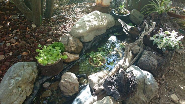 庭の小さな小川作り