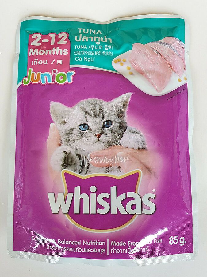 Whiskas Pouch Junior Cat Kitten Wet Food From Real Fish Tuna Mackerel Flavor Cat Food Brands Healthy Cat Food Brands Dry Cat Food