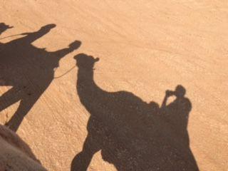 Mariagrazia viaggio in #Oman: guida brava, ottime strutture..viaggio emozionante!