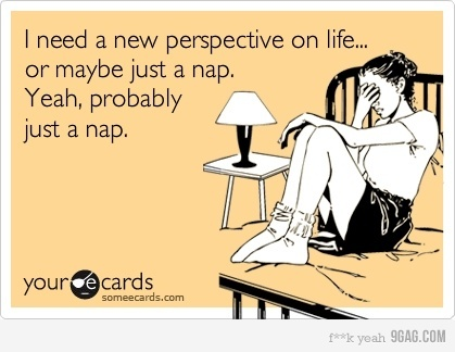 : Funny Things, Life, Quotes, Funny Pictures, Napping Rules, Forever Napping, Funny Stuff, Funny Sayings Thoughts, Naps Solve