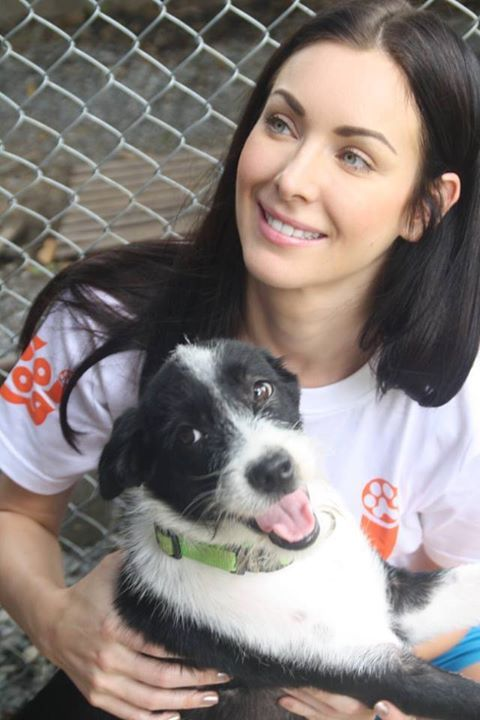 What's a pleasure to meet this beautiful lady Miss Natalie Glebova yesterday, Natalie holds the title of Miss Universe Year 2005. She came to meet our little friends who were rescued and survived from the meat trade trucks. She is helping us to find home for these lucky ones. Thank you so much miss!