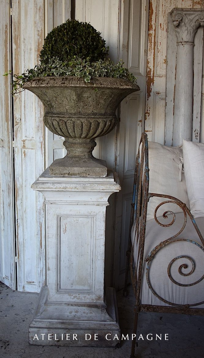boxwood and ivy in an urn