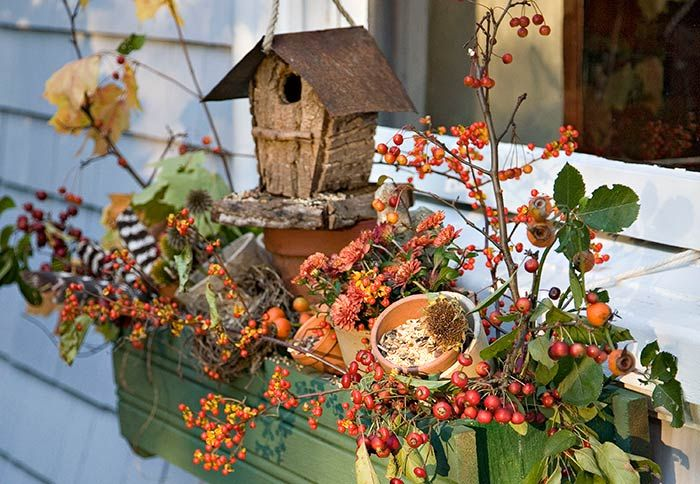 Add Accessories -When the growing season is waning, one possibility to consider is going without plants. This fall window box gets by with accessories and colorful crabapples and bittersweet berries.