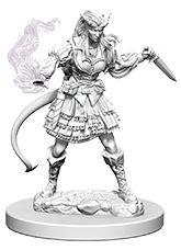 Miniature: Nolzur's | Tiefling Female Sorcerer