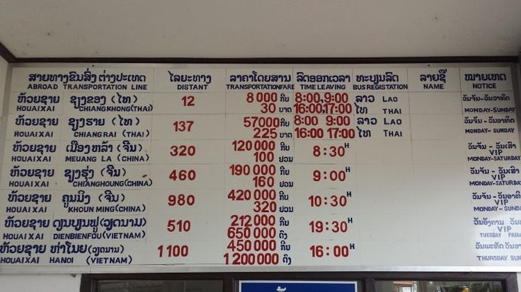 The international bus timetable