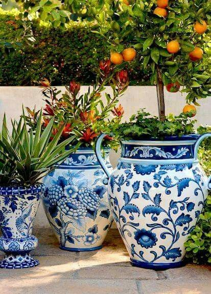 Image Result For Large Blue And White Planter With Quat