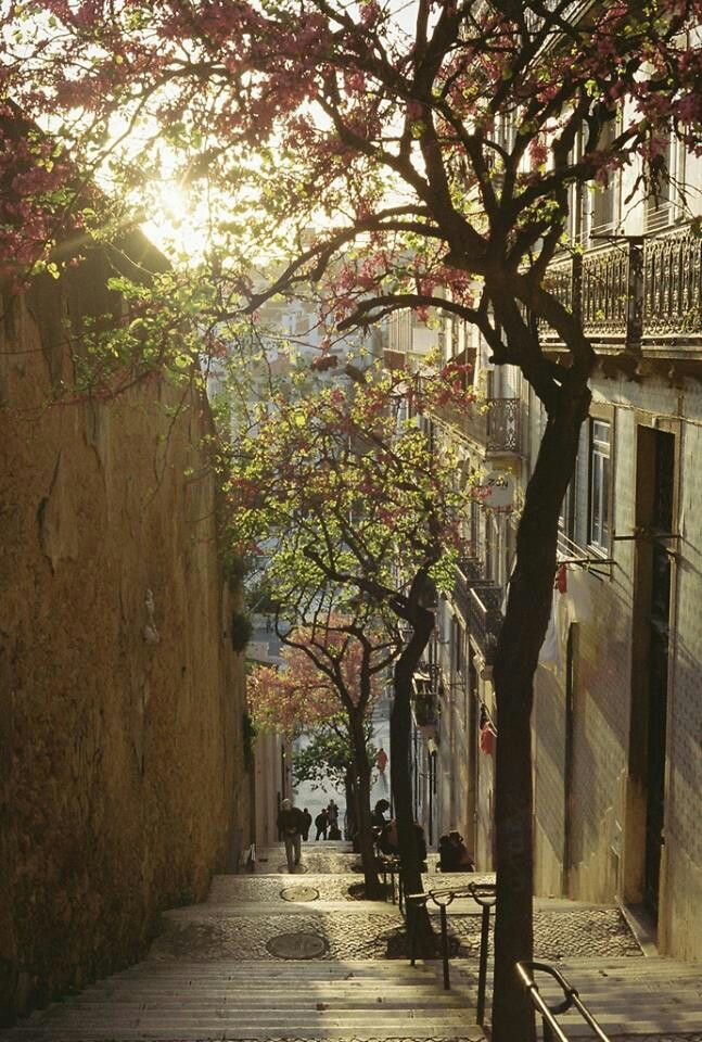 Streets of Lisbon:
