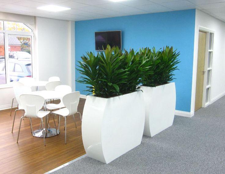 26 best barrier plants in offices images on pinterest for Office design derby