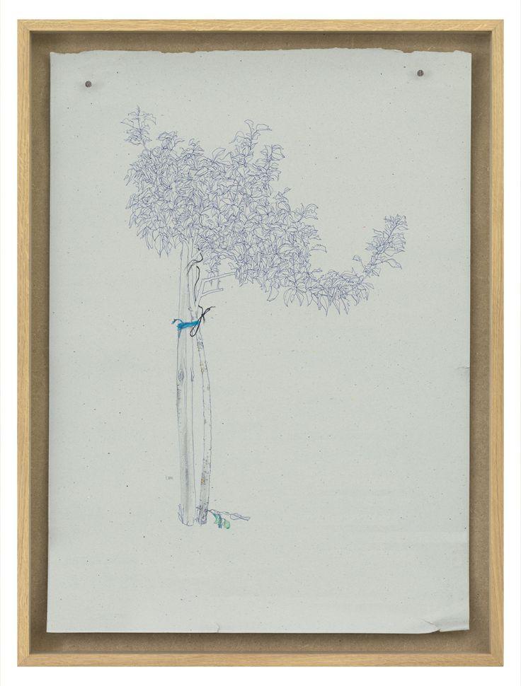 black and blue rope  |  TOM FRENCKEN