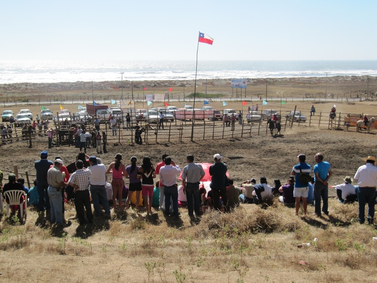 Rodeo de Iloca, Chile.