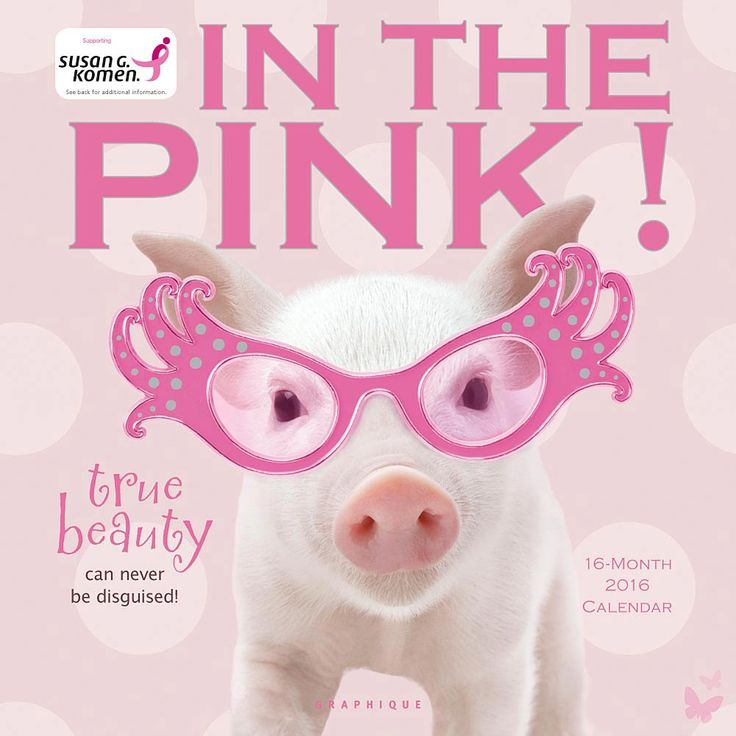 In the Pink 2016 Wall Calendar | $14.99 | You'll be feeling In the Pink! all year long if you spend it with these porcine princesses! These particularly pretty, particularly pink piglets appreciate all the finer things in life: cupcakes, fashionable shoes, pedicures. With their stylish jewelry, dazzling tiaras and other outrageous accessories, they celebrate everything feminine, everything frilly and flouncy, everything…pink!