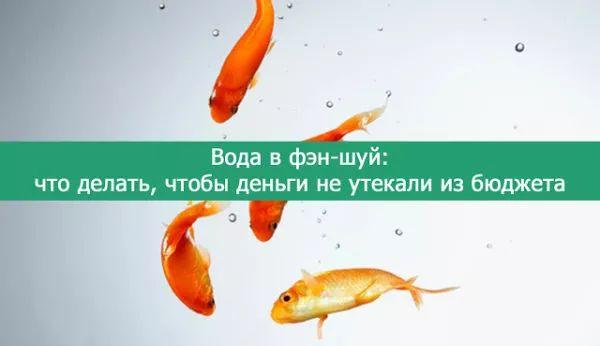 voda-v-fen-shuy-chto-delat-chtobyi-dengi-ne-utekali-iz-byudzheta