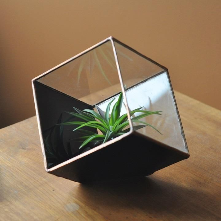 Magus Earth Terrarium Kit, Medium Cube Glass Planter In Copper Or Silver  Color    Stained Glass    Terrarium Supplies    Eco Friendly
