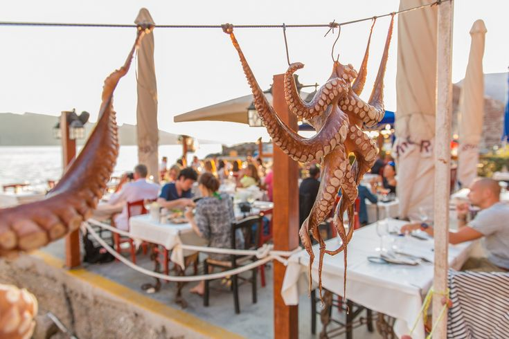 Deriving from the depths of history and infused by the Mediterranean's climate, Greek cuisine features some of the finest ingredients in the world. Sample them in one of the many traditional Greek dishes, accompanying your food with a shot of ouzo or tsipouro! Greece has been spreading its...