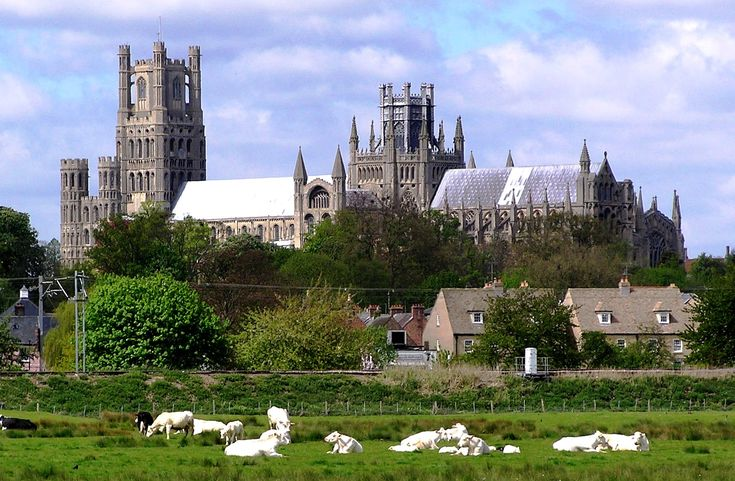 Ely Cathedral 1 - Ely city, England, UK