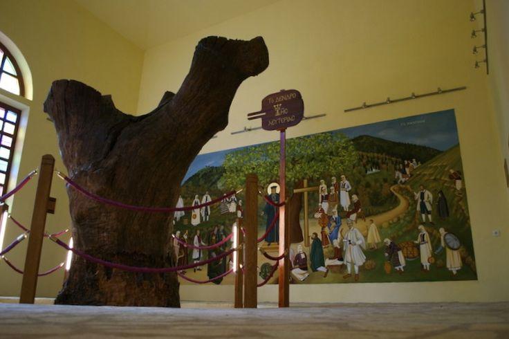 Το Μουσείο του πατρο-Κοσμά του Αιτωλού | Visit Pogoni - Οδηγός Πωγώνι 'Ηπειρος