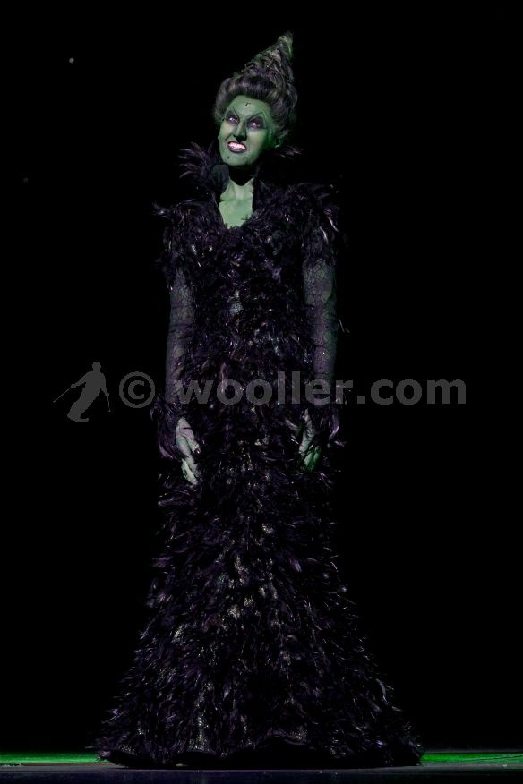 9 best Wicked Witch/Miss Gulch images on Pinterest | Wicked witch ...