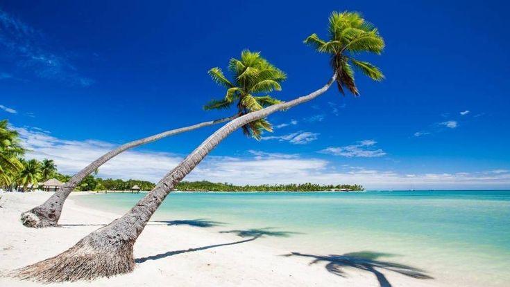 treasure island fiji -2017