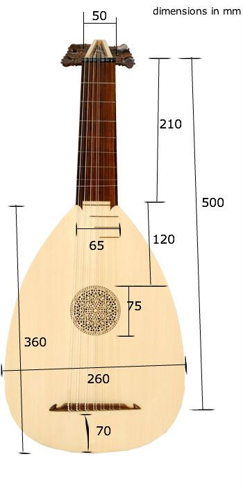 Anyone know lute measurements? - The Trek BBS