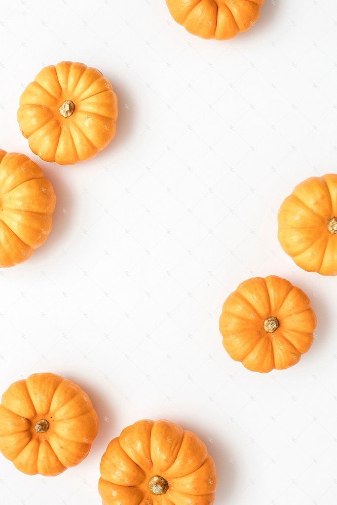 Fall styled stock photography perfect for seasonal sales and website promotion! Pumpkins.