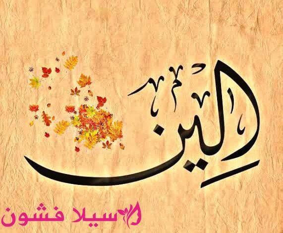 معنى اسم الين سيلا فشون Arabic Calligraphy Calligraphy