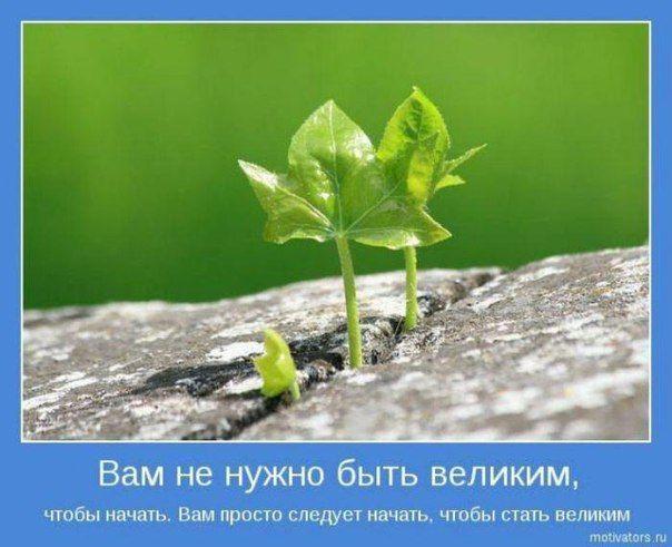 Галина Башлаева#Skinny body care #идеальная дубликация#бизнес#пассивный доход