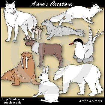 Arctic Animals - This pack contains 15 arctic animals with matching blacklines.