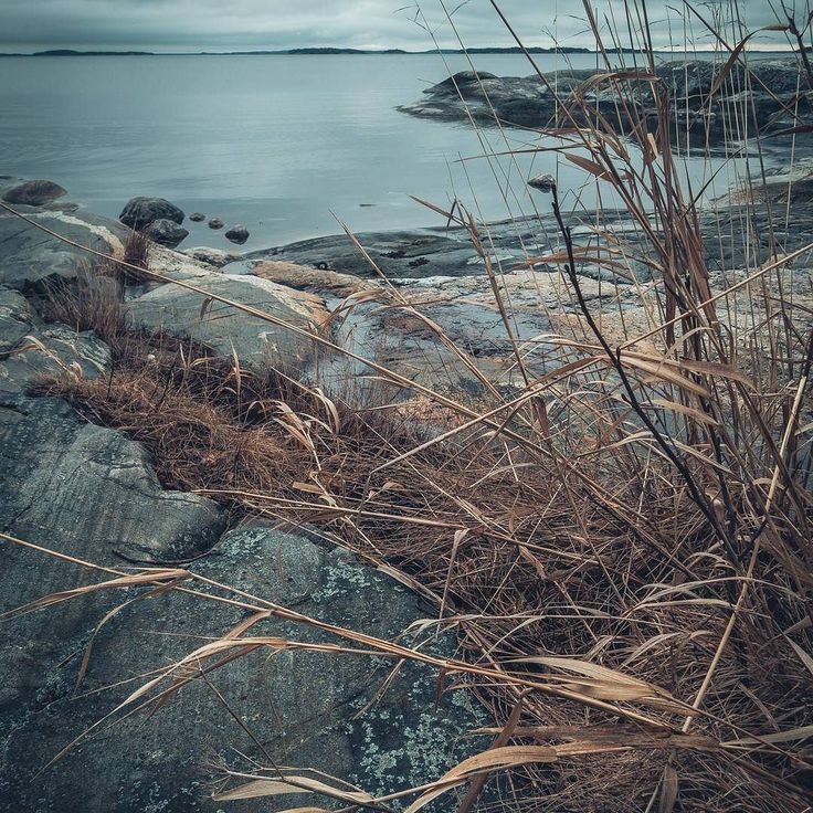 Greycold but nice!  #ig_sweden #swedenimages #scandinavia #igerssweden #swedishmoments #igsweden #schweden #sweden #sverige #visitsweden #scandinavian #nordic #svenska #visitscandinavia #mood #moodoftheday #ocean #water #coast