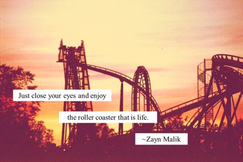 Life Quote (life,quote,roller coaster,fun,sunset,landscape