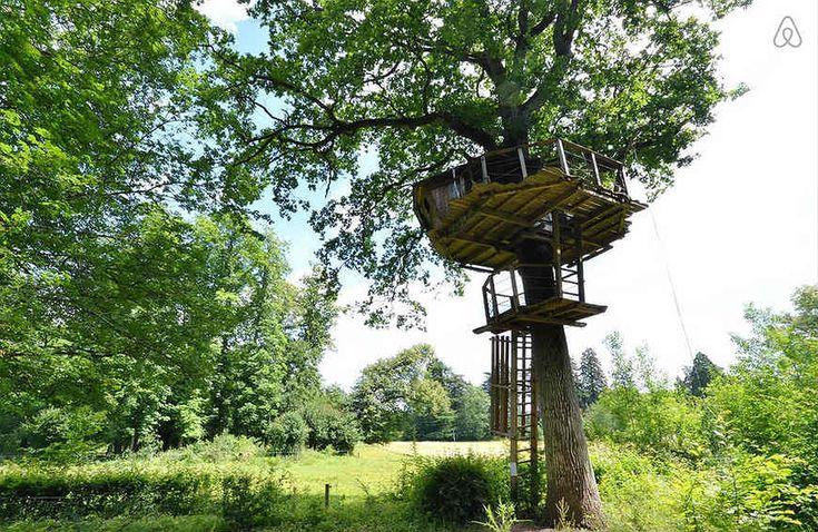 airbnb-casa-na-arvore7-7