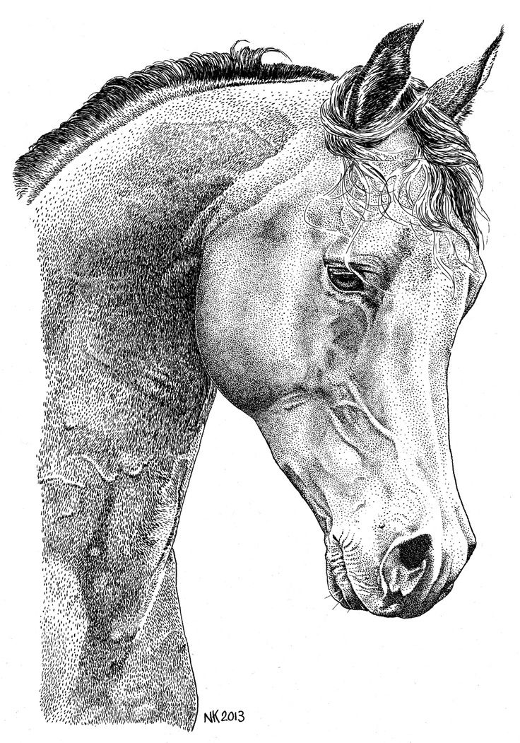 Horse_ink_pen_pointillism