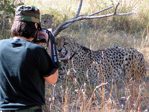 These Cheetahs Work On A South African Air Force Base, And Their Job Is Extremely Important